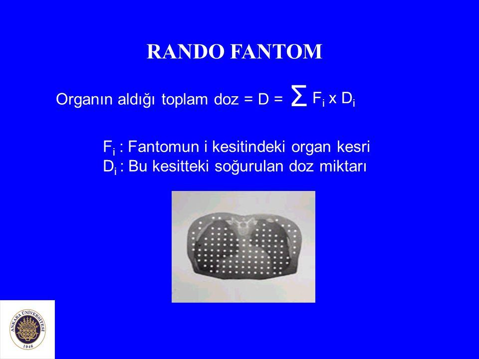 Organın aldığı toplam doz = D = Σ F i x D i F i : Fantomun i kesitindeki organ kesri D i : Bu kesitteki soğurulan doz miktarı RANDO FANTOM