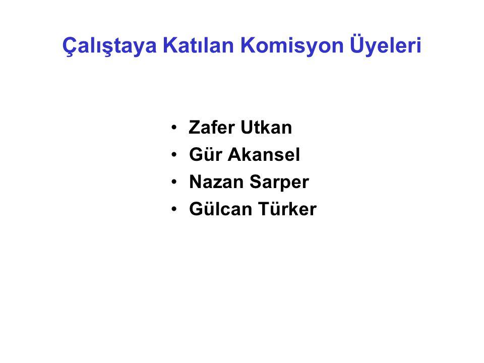 Çalıştaya Katılan Komisyon Üyeleri Zafer Utkan Gür Akansel Nazan Sarper Gülcan Türker