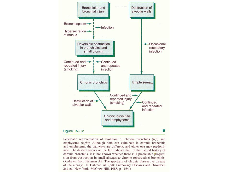 Bronşial Astma I  Nöbetler halinde gelen, trakeabronşial yapının çeşitli uyaranlara karşı aşırı bronkokonstriktör bir cevap sonucu ortaya çıkan reversibl bir spazmıdır  Hiperaktivitenin nedeni tekraralayan enfeksiyonlar ???.