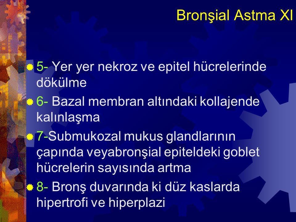 Bronşial Astma XI  5- Yer yer nekroz ve epitel hücrelerinde dökülme  6- Bazal membran altındaki kollajende kalınlaşma  7-Submukozal mukus glandları