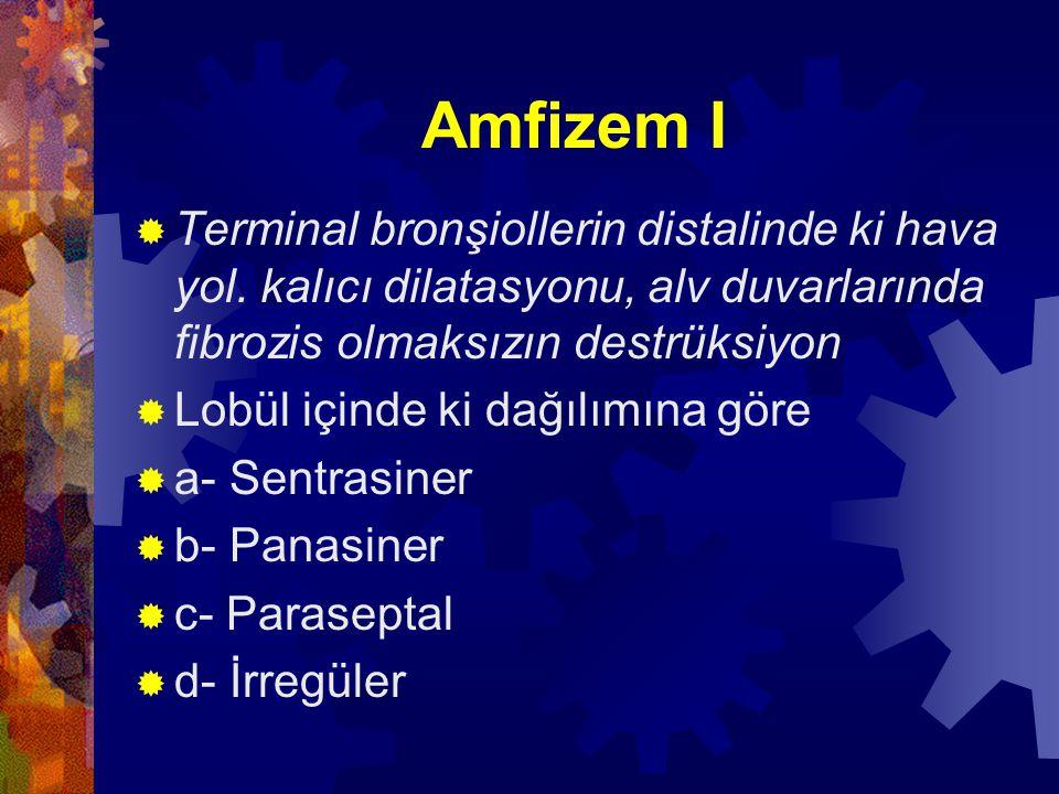 Amfizem II  Sentrasiner; Asinilerin santral ve proksimal kısımları etkilenir, alv.