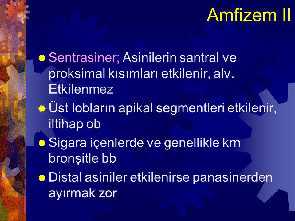 Amfizem III  Panasiner; Respiratuar bronşiolden terminal alveole kadar uniform dilatasyon  Alfa 1 Antitripsin yetmezliği ile ilişkili  Alt loblarda daha sık  Paraseptal (Distal asiner);Asinusların proksimali N, distal kısmı genişlemiş  Lobüllerin sınırında ve plevraya yakın  Fibrozis, skar ve atelektaziye komşu alanlar  Üst loblarda sık