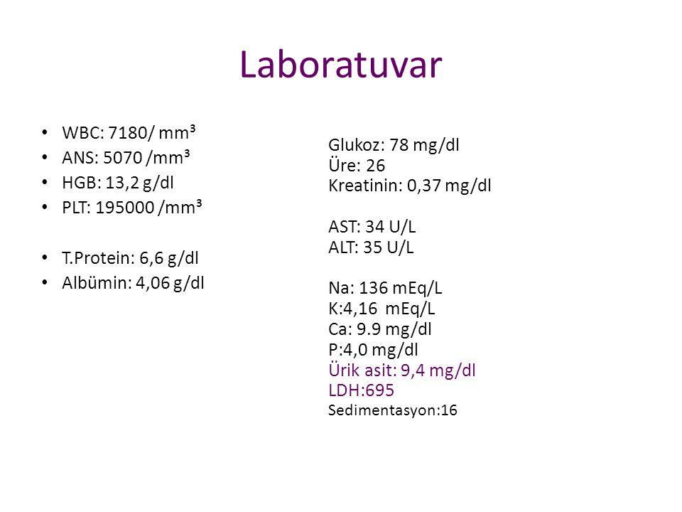 Laboratuvar WBC: 7180/ mm³ ANS: 5070 /mm³ HGB: 13,2 g/dl PLT: 195000 /mm³ T.Protein: 6,6 g/dl Albümin: 4,06 g/dl Glukoz: 78 mg/dl Üre: 26 Kreatinin: 0