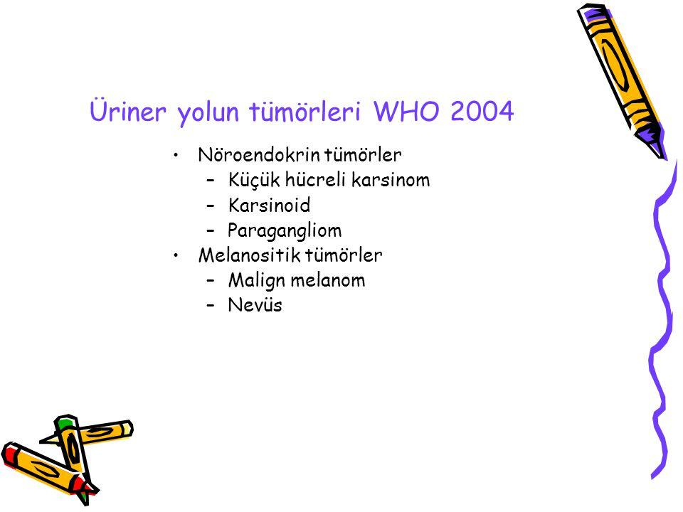 Üriner yolun tümörleri WHO 2004 Nöroendokrin tümörler –Küçük hücreli karsinom –Karsinoid –Paragangliom Melanositik tümörler –Malign melanom –Nevüs