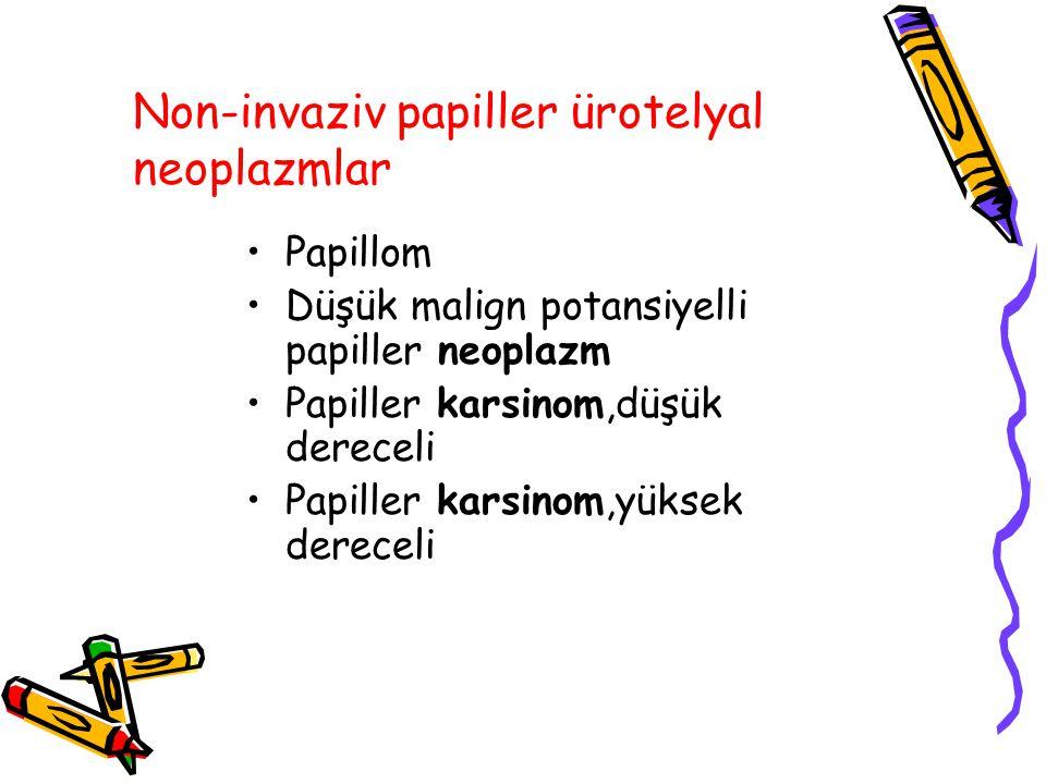 Non-invaziv papiller ürotelyal neoplazmlar Papillom Düşük malign potansiyelli papiller neoplazm Papiller karsinom,düşük dereceli Papiller karsinom,yük