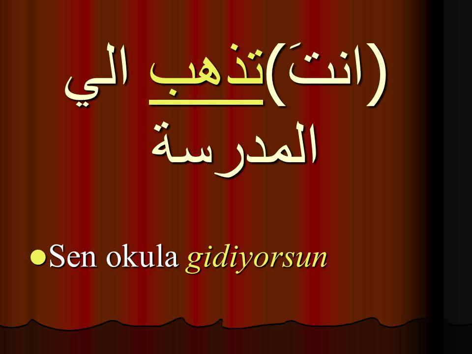 Sen mektup yazıyorsun Sen mektup yazıyorsun تكتبُ الرسالة (انتَ)
