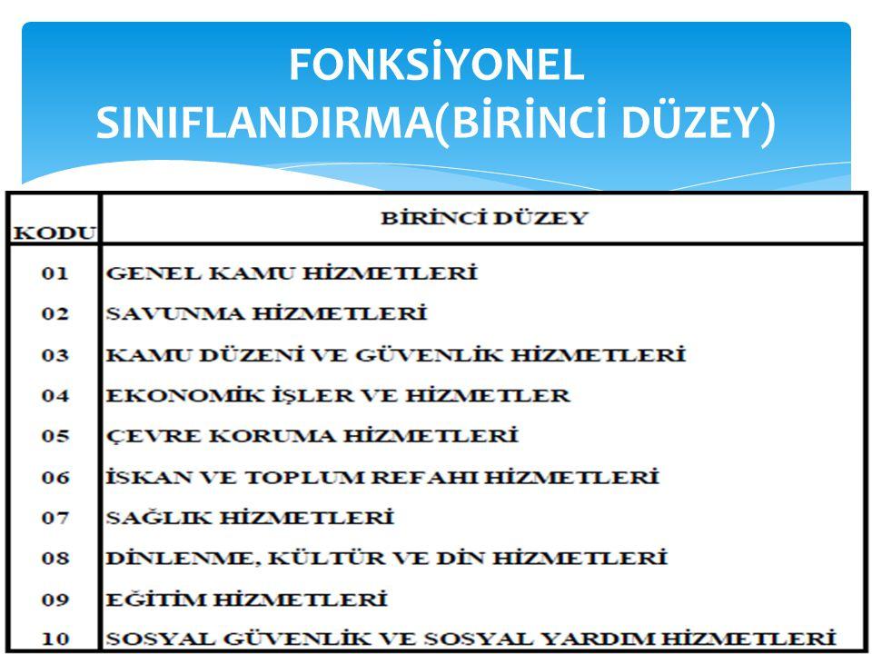 FONKSİYONEL SINIFLANDIRMA(BİRİNCİ DÜZEY)