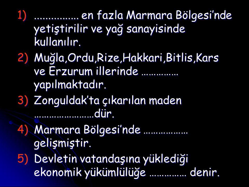 1)................ en fazla Marmara Bölgesi'nde yetiştirilir ve yağ sanayisinde kullanılır. 2)Muğla,Ordu,Rize,Hakkari,Bitlis,Kars ve Erzurum illerinde