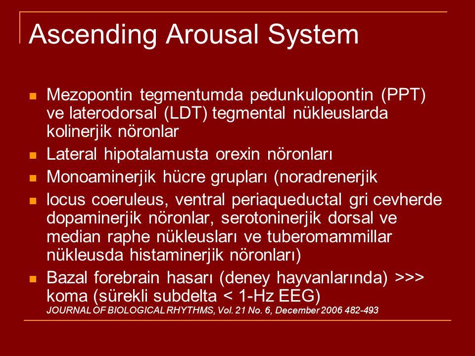 Ascending Arousal System JOURNAL OF BIOLOGICAL RHYTHMS, Vol. 21 No. 6, December 2006 482-493