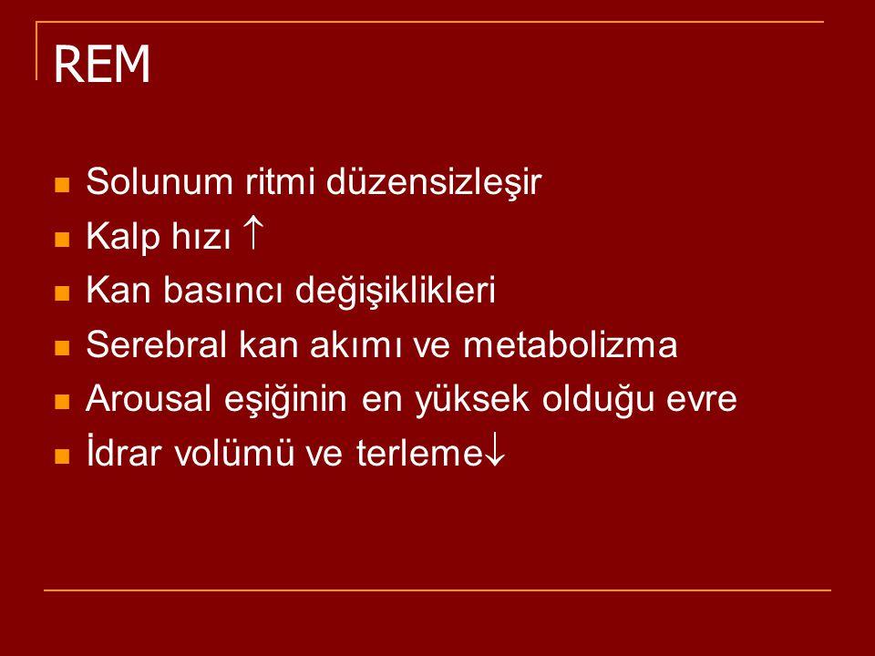 REM Solunum ritmi düzensizleşir Kalp hızı  Kan basıncı değişiklikleri Serebral kan akımı ve metabolizma Arousal eşiğinin en yüksek olduğu evre İdrar