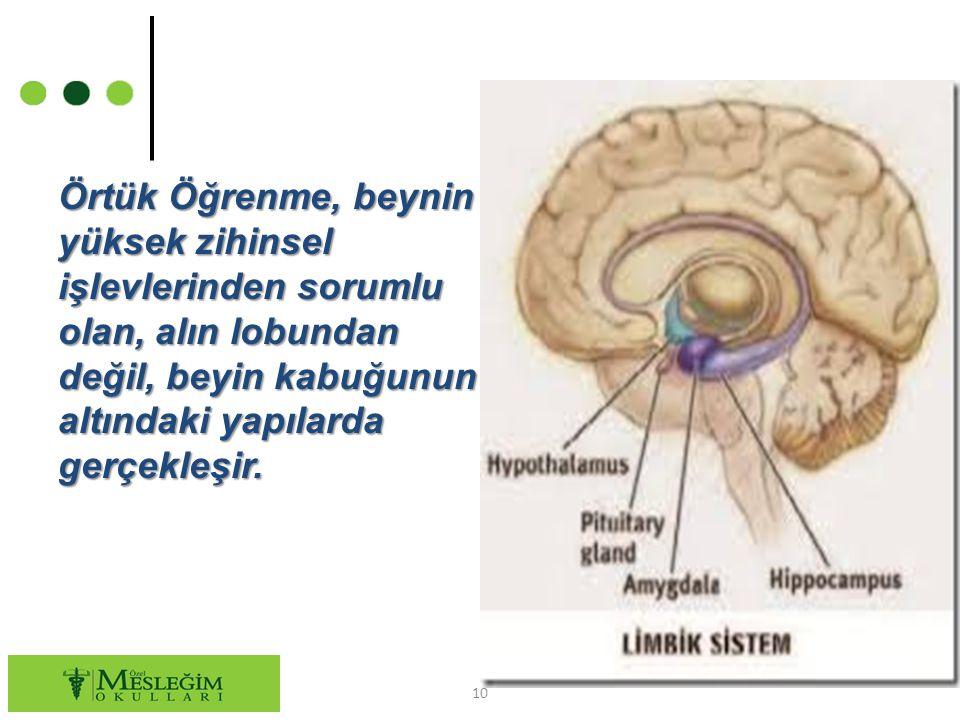 10 Örtük Öğrenme, beynin yüksek zihinsel işlevlerinden sorumlu olan, alın lobundan değil, beyin kabuğunun altındaki yapılarda gerçekleşir.