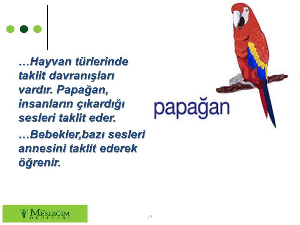 …Hayvan türlerinde taklit davranışları vardır. Papağan, insanların çıkardığı sesleri taklit eder. …Bebekler,bazı sesleri annesini taklit ederek öğreni