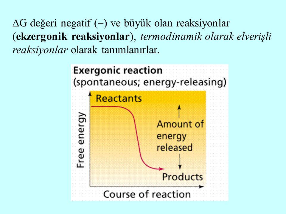  G değeri negatif (  ) ve büyük olan reaksiyonlar (ekzergonik reaksiyonlar), termodinamik olarak elverişli reaksiyonlar olarak tanımlanırlar.