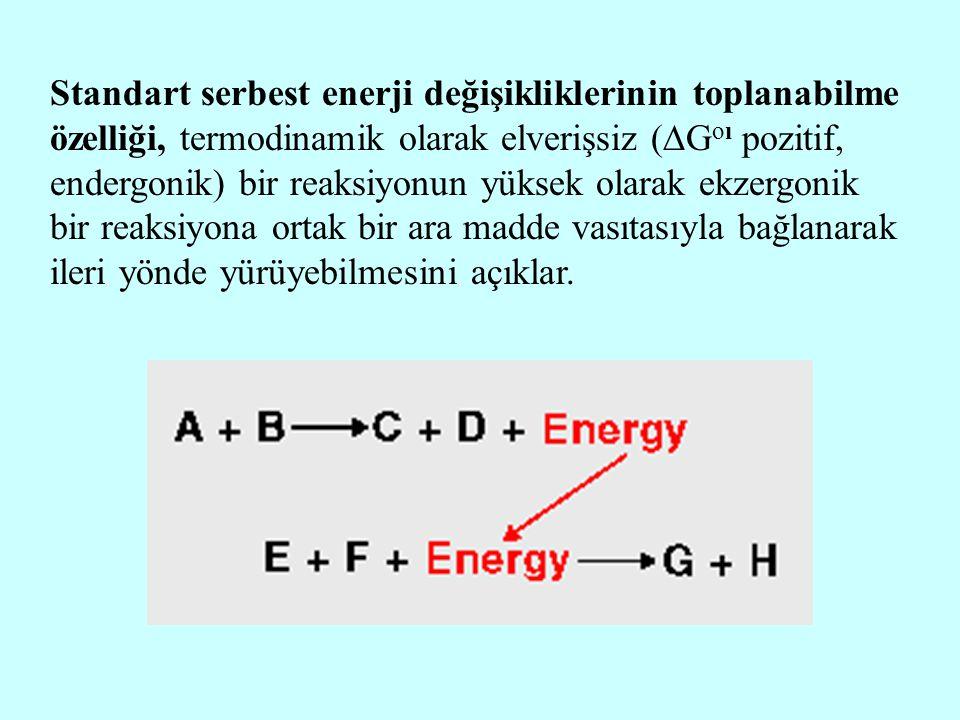 Standart serbest enerji değişikliklerinin toplanabilme özelliği, termodinamik olarak elverişsiz (  G oı pozitif, endergonik) bir reaksiyonun yüksek o