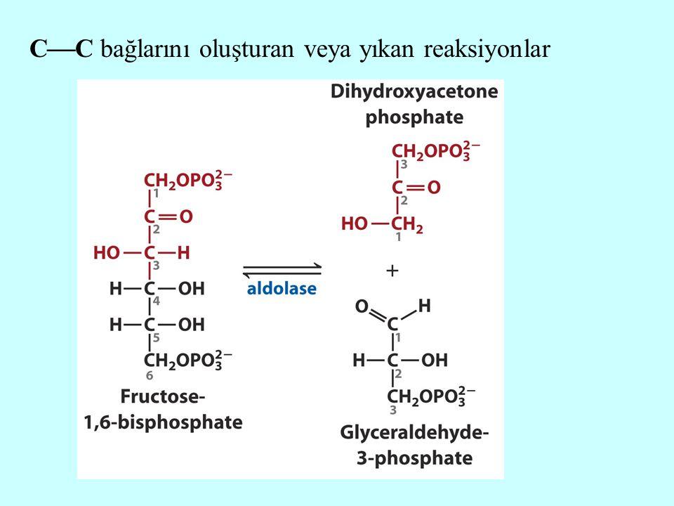C  C bağlarını oluşturan veya yıkan reaksiyonlar