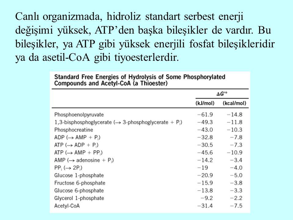 Canlı organizmada, hidroliz standart serbest enerji değişimi yüksek, ATP'den başka bileşikler de vardır. Bu bileşikler, ya ATP gibi yüksek enerjili fo