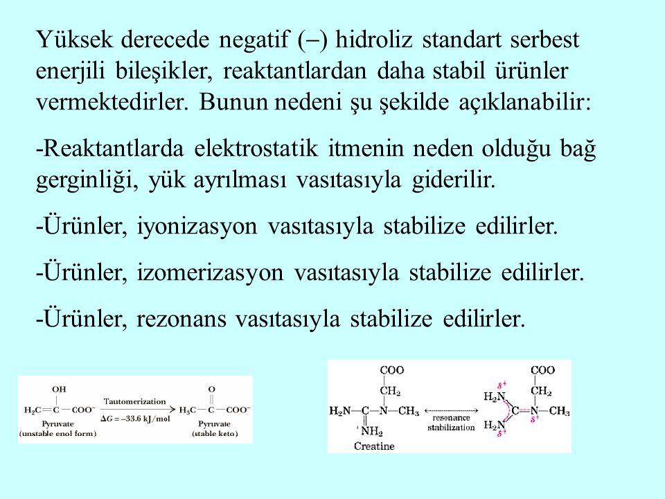Yüksek derecede negatif (  ) hidroliz standart serbest enerjili bileşikler, reaktantlardan daha stabil ürünler vermektedirler. Bunun nedeni şu şekild
