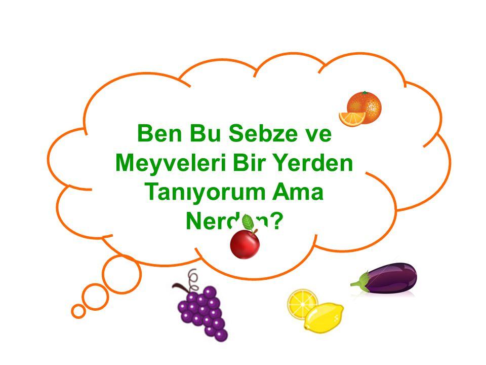 Ben Bu Sebze ve Meyveleri Bir Yerden Tanıyorum Ama Nerden?