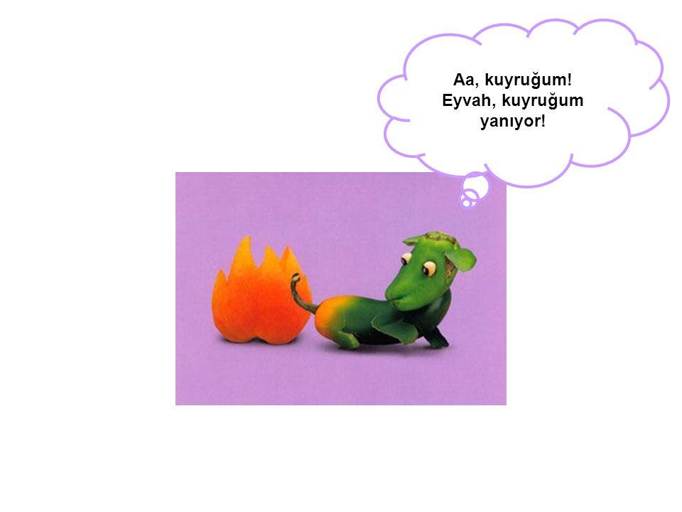 Aa, kuyruğum! Eyvah, kuyruğum yanıyor!