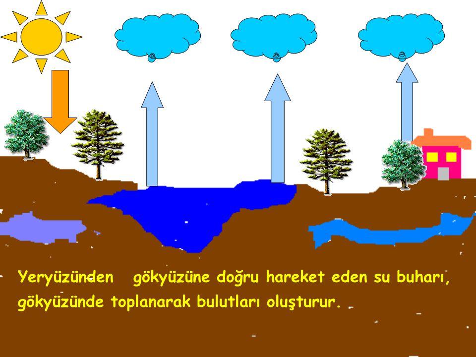 Isınan yeryüzündeki sular, buharlaşarak gökyüzüne doğru yükselir. ısı Su buharı