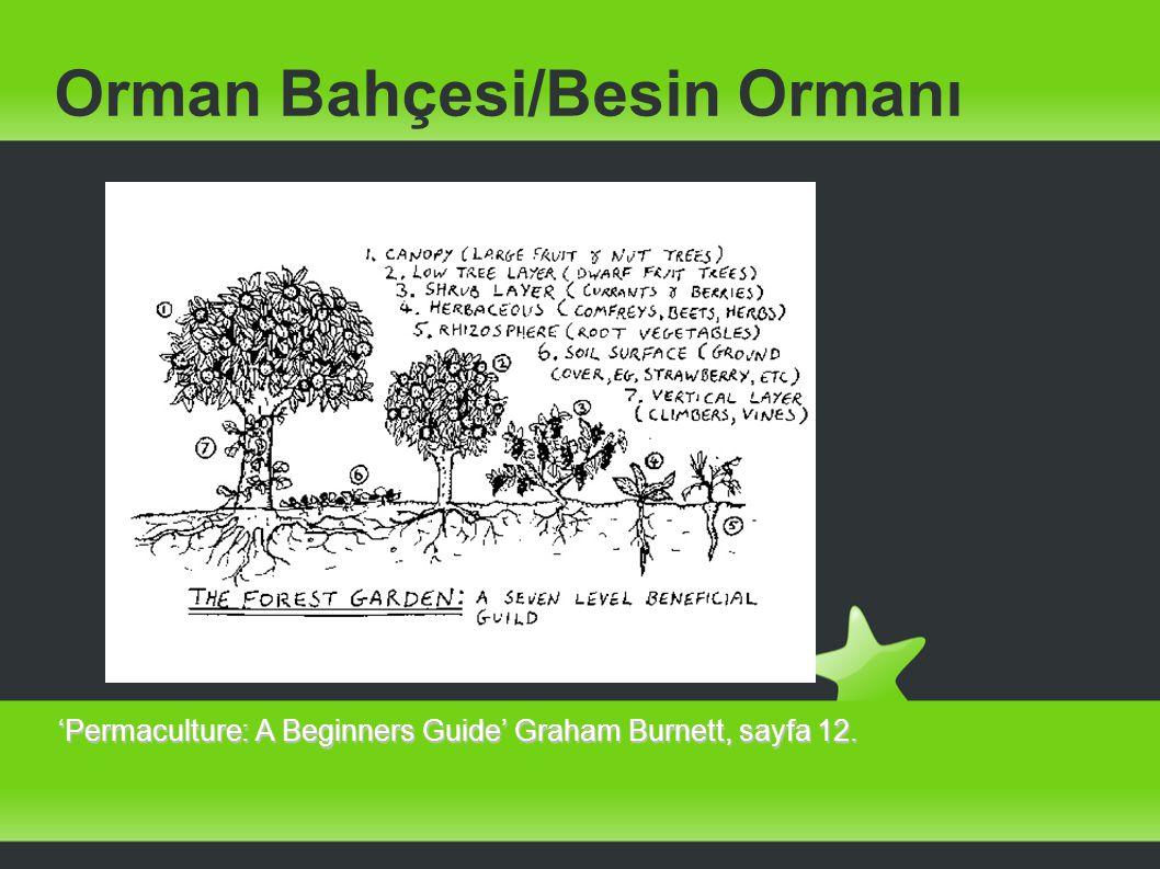 Orman Bahçesi/Besin Ormanı 'Permaculture: A Beginners Guide' Graham Burnett, sayfa 12.
