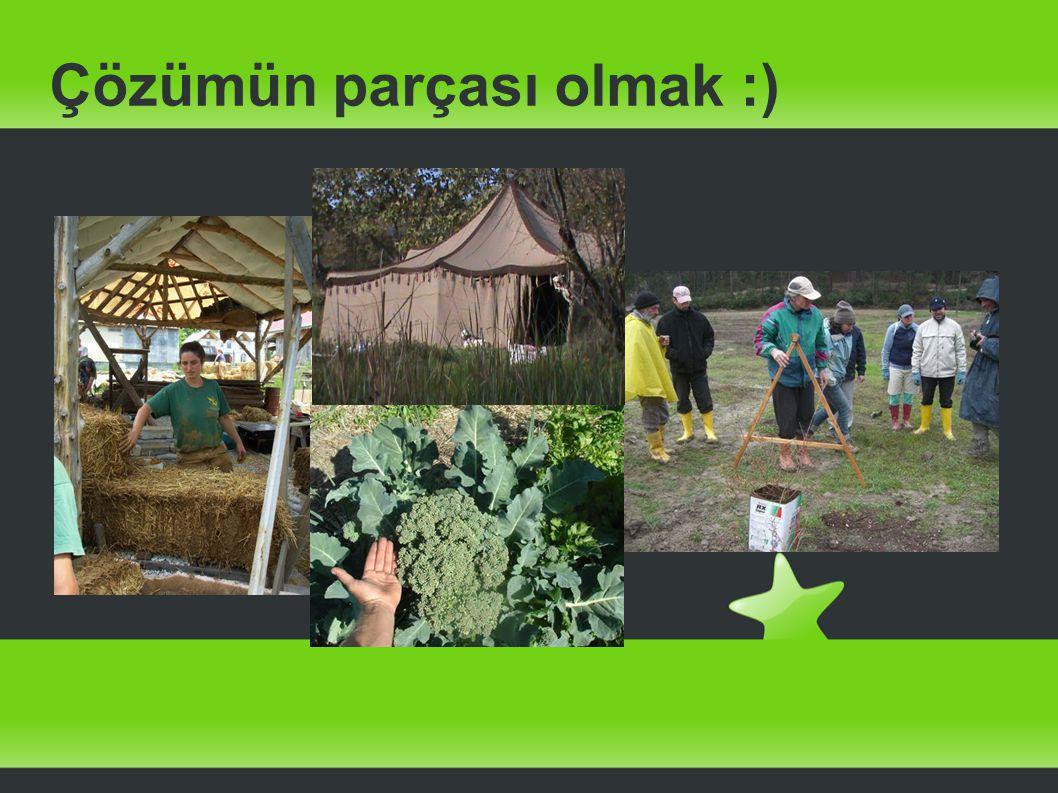 Çözümün parçası olmak :)