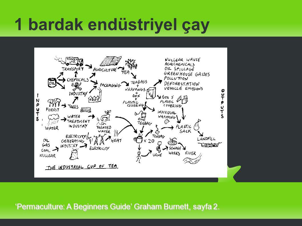 Türkiye de Permakültür 2 2009 yılında permakültür ve ekoköy girişimleri tecrübelerinin bir çevrimiçi platformda toplanması amacıyla açılmış bir ning sayfası var.