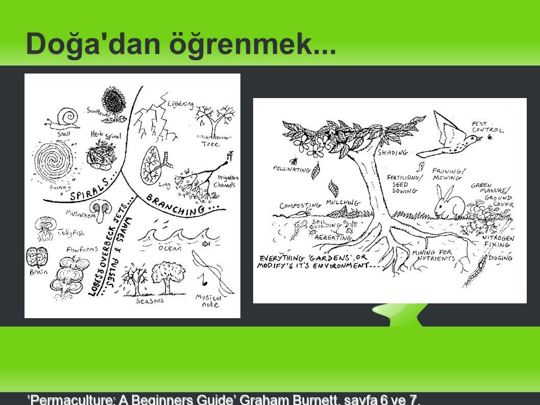 Doğa'dan öğrenmek... 'Permaculture: A Beginners Guide' Graham Burnett, sayfa 6 ve 7.