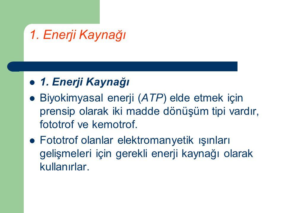 1. Enerji Kaynağı Biyokimyasal enerji (ATP) elde etmek için prensip olarak iki madde dönüşüm tipi vardır, fototrof ve kemotrof. Fototrof olanlar elekt