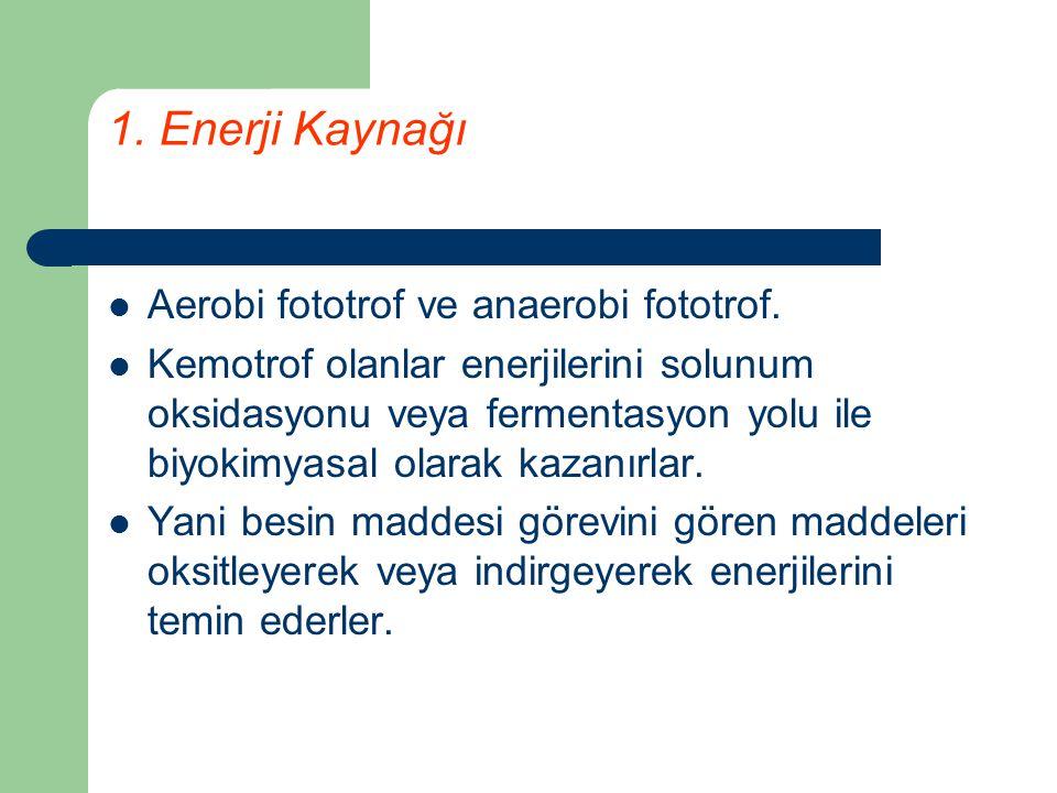 1. Enerji Kaynağı Aerobi fototrof ve anaerobi fototrof. Kemotrof olanlar enerjilerini solunum oksidasyonu veya fermentasyon yolu ile biyokimyasal olar