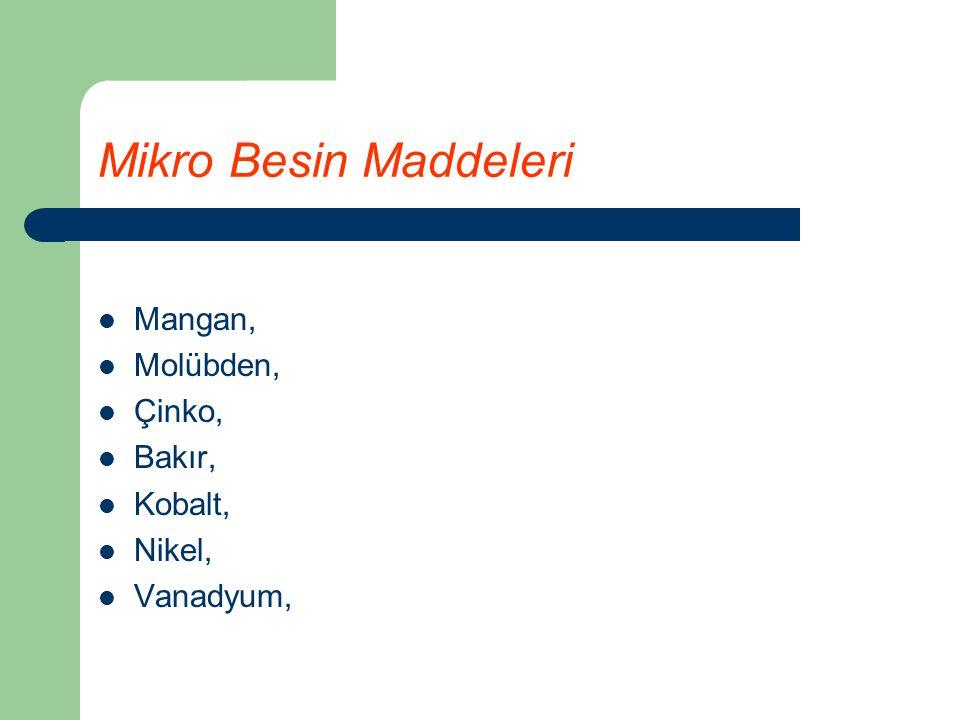 Mikro Besin Maddeleri Mangan, Molübden, Çinko, Bakır, Kobalt, Nikel, Vanadyum,