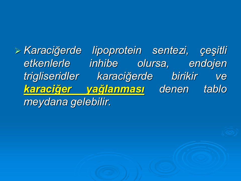  Karaciğerde lipoprotein sentezi, çeşitli etkenlerle inhibe olursa, endojen trigliseridler karaciğerde birikir ve karaciğer yağlanması denen tablo me