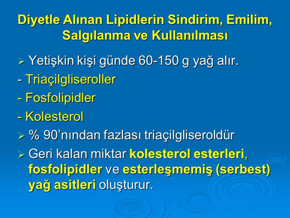 Diyetle Alınan Lipidlerin Sindirim, Emilim, Salgılanma ve Kullanılması  Yetişkin kişi günde 60-150 g yağ alır. - Triaçilgliseroller - Fosfolipidler -