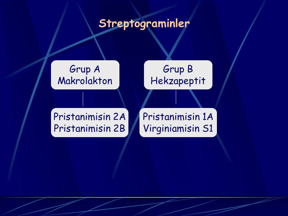 Streptograminler Grup A Makrolakton Grup B Hekzapeptit Pristanimisin 2A Pristanimisin 2B Pristanimisin 1A Virginiamisin S1