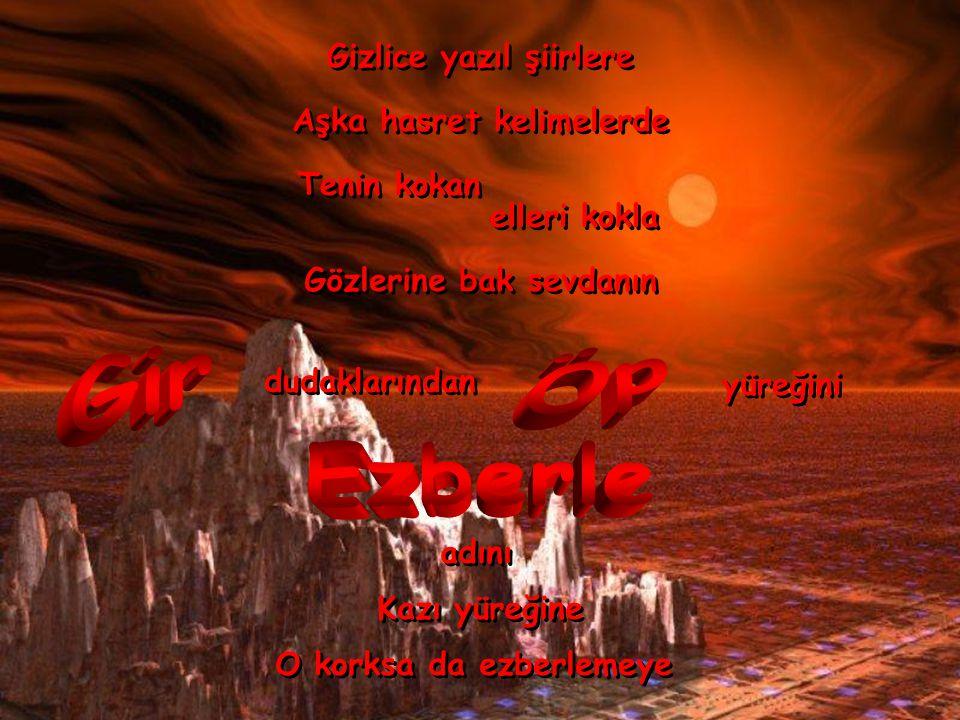 usulca usulca Dört bir yanını sar Dört bir yanını sar Kanadı kırık Kanadı kırık Martı çığlıklarında Martı çığlıklarında uyan 19.10.2002