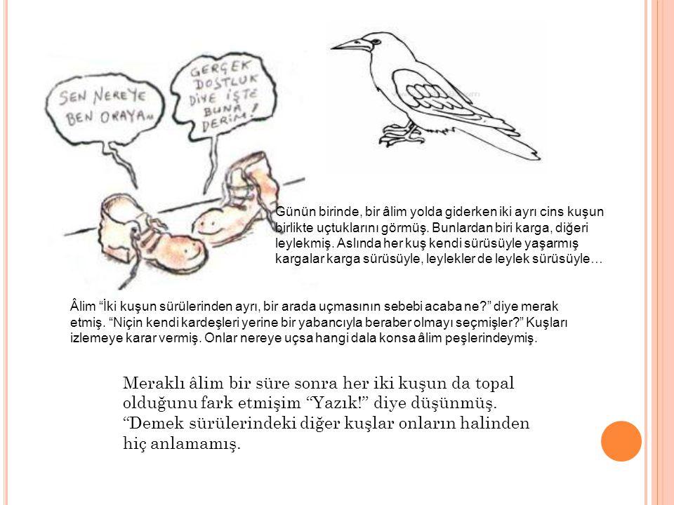 Günün birinde, bir âlim yolda giderken iki ayrı cins kuşun birlikte uçtuklarını görmüş. Bunlardan biri karga, diğeri leylekmiş. Aslında her kuş kendi