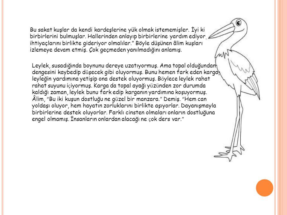Bu sakat kuşlar da kendi kardeşlerine yük olmak istememişler. İyi ki birbirlerini bulmuşlar. Hallerinden anlayıp birbirlerine yardım ediyor, ihtiyaçla