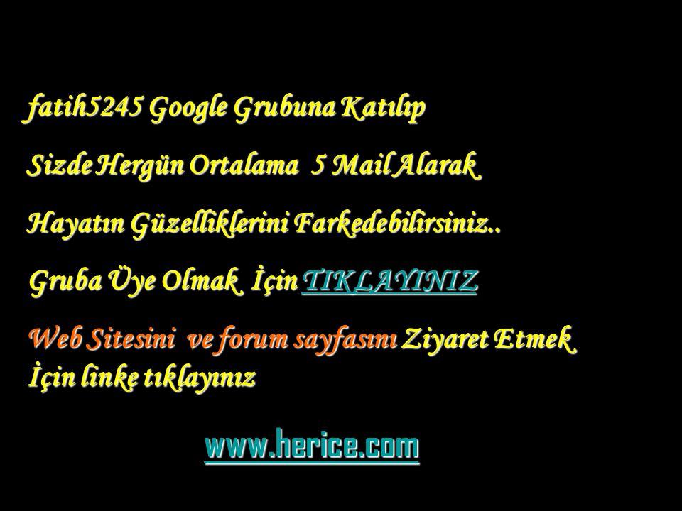 aslan güler 2006© eaguler@hotmail.com
