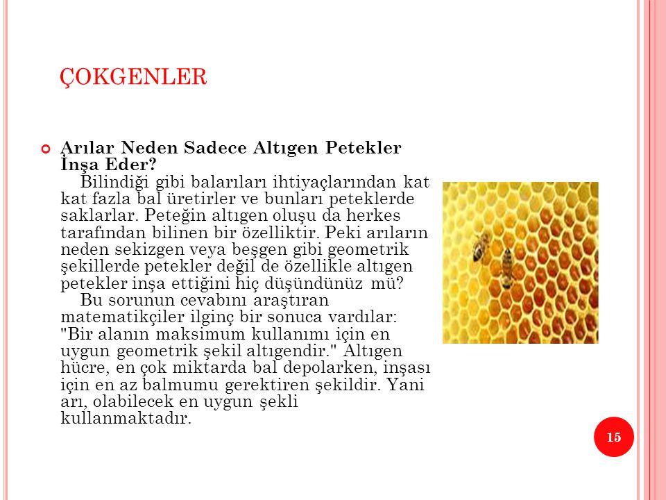 ÇOKGENLER 15 Arılar Neden Sadece Altıgen Petekler İnşa Eder? Bilindiği gibi balarıları ihtiyaçlarından kat kat fazla bal üretirler ve bunları petekler