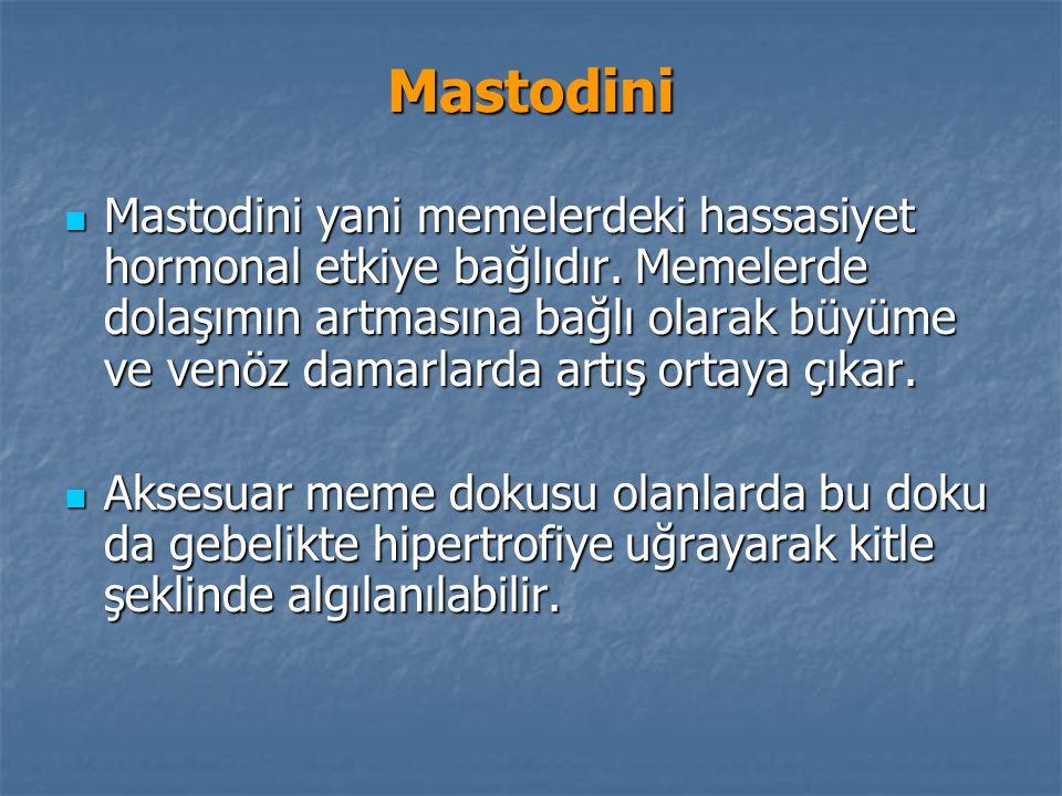 Mastodini Mastodini yani memelerdeki hassasiyet hormonal etkiye bağlıdır.