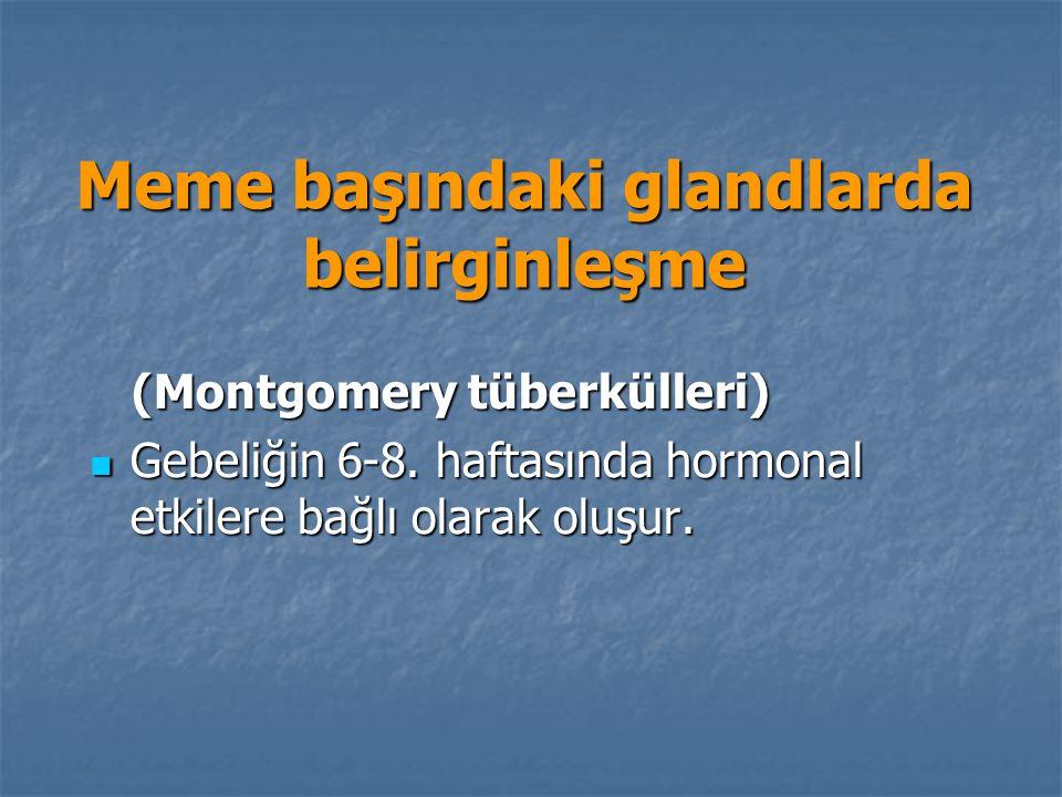 Meme başındaki glandlarda belirginleşme (Montgomery tüberkülleri) (Montgomery tüberkülleri) Gebeliğin 6-8. haftasında hormonal etkilere bağlı olarak o