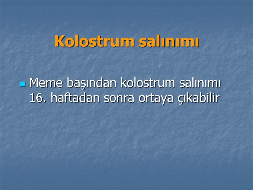 Kolostrum salınımı Meme başından kolostrum salınımı 16.