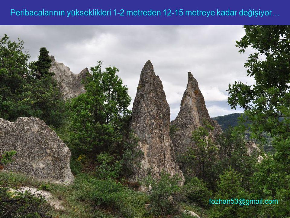 Peribacalarının yükseklikleri 1-2 metreden 12-15 metreye kadar değişiyor… fozhan53@gmail.com