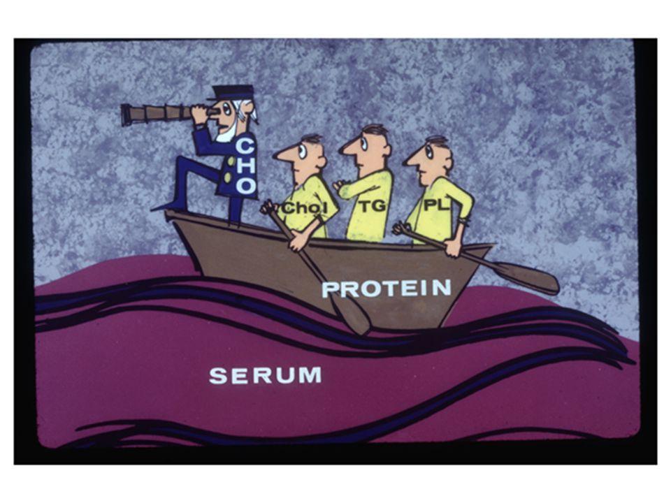 Primer hiperlipidemilerde; Apolipoproteinler Enzimler Lipoprotein reseptörleri
