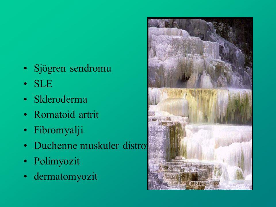 Sjögren sendromu SLE Skleroderma Romatoid artrit Fibromyalji Duchenne muskuler distrofi Polimyozit dermatomyozit