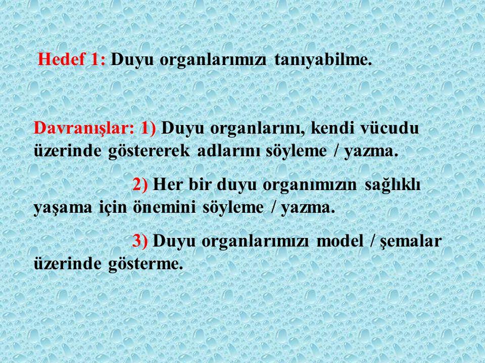 2) Burunun görevi nedir? A) işitmek B) tatmak C) koklamak