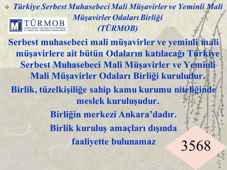3568  Türkiye Serbest Muhasebeci Mali Müşavirler ve Yeminli Mali Müşavirler Odaları Birliği (TÜRMOB) Serbest muhasebeci mali müşavirler ve yeminli ma