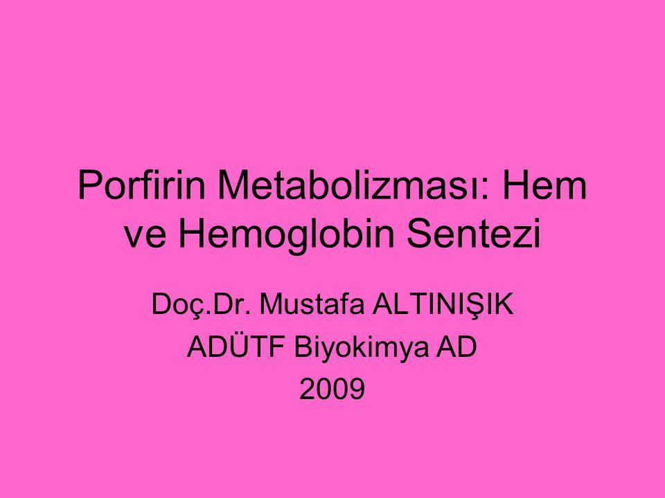 Porfirin Metabolizması: Hem ve Hemoglobin Sentezi Doç.Dr. Mustafa ALTINIŞIK ADÜTF Biyokimya AD 2009