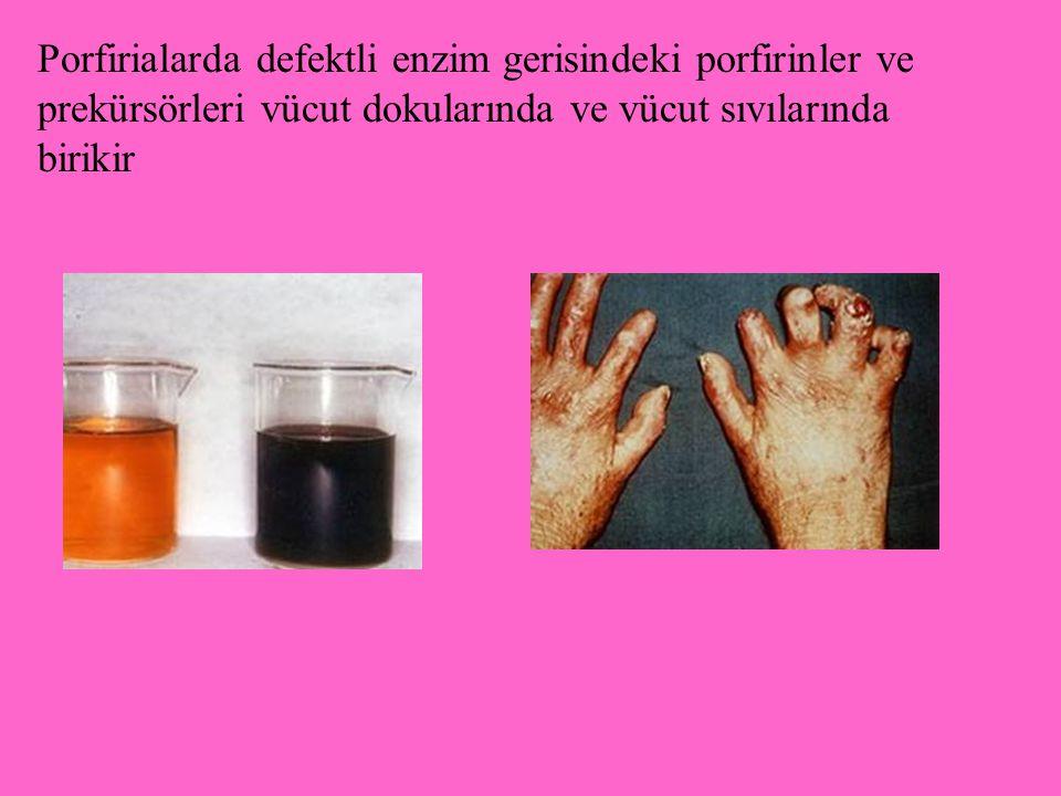 Porfirialarda defektli enzim gerisindeki porfirinler ve prekürsörleri vücut dokularında ve vücut sıvılarında birikir