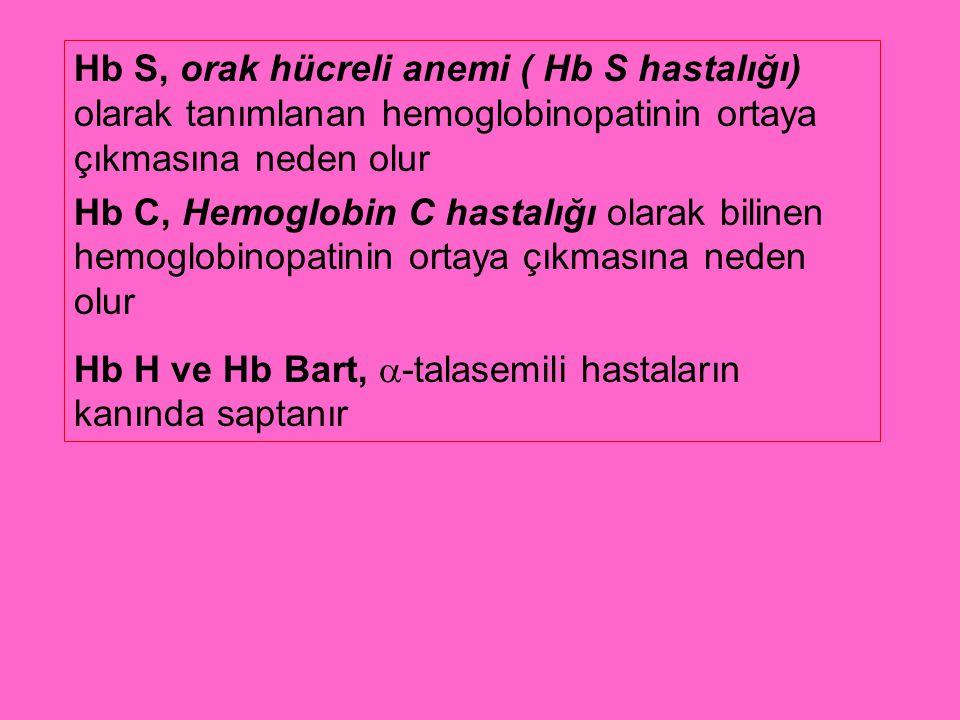 Hb S, orak hücreli anemi ( Hb S hastalığı) olarak tanımlanan hemoglobinopatinin ortaya çıkmasına neden olur Hb C, Hemoglobin C hastalığı olarak biline